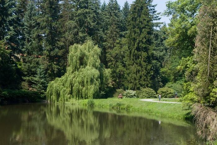 Ботанический сад в Пругонице 25462