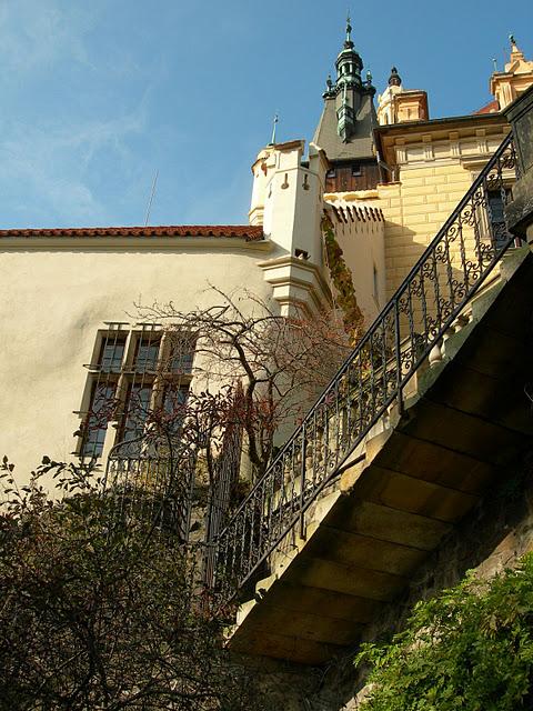 Ботанический сад в Пругонице 33092