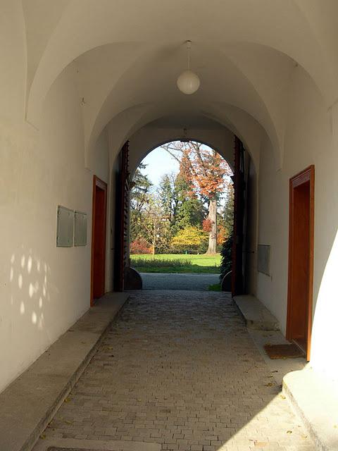 Ботанический сад в Пругонице 42292