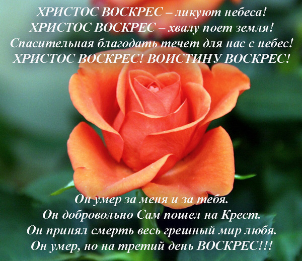 http://img0.liveinternet.ru/images/attach/c/4/80/187/80187208_large_hristos_voskres_ya.jpg