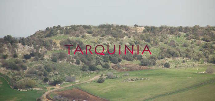 Tarquinia_vetus_DSC_1443 (700x330, 23Kb)