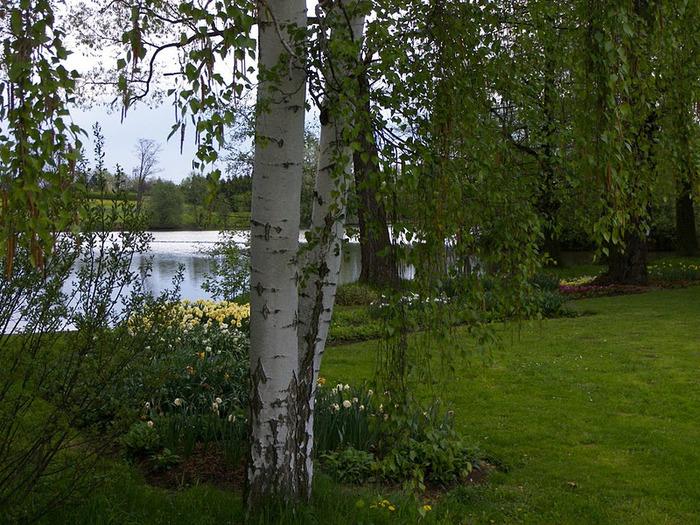 Ботанический сад в Пругонице 48259