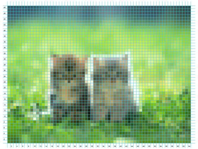 cats_1 (640x482, 54Kb)