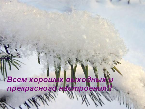 снег (600x450, 38Kb)