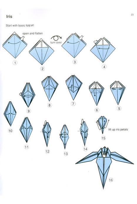 4328974_origamiirisshema