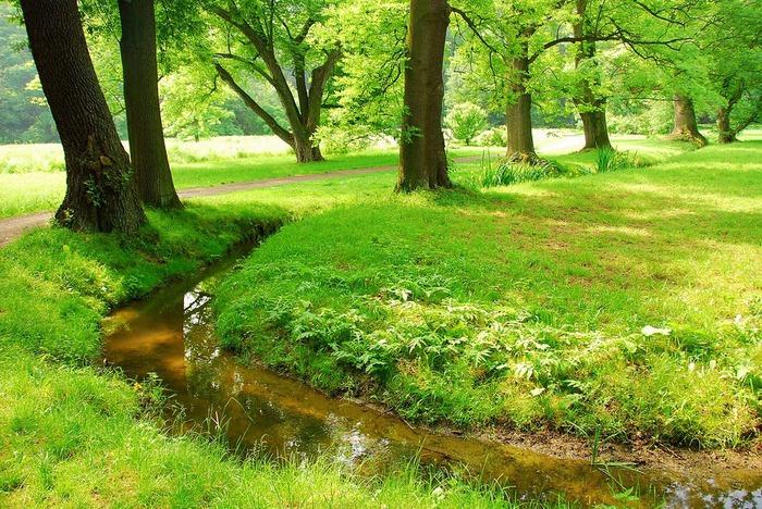 Ботанический сад в Пругонице 13795