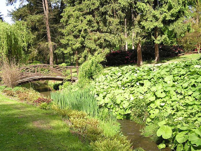 Ботанический сад в Пругонице 11467