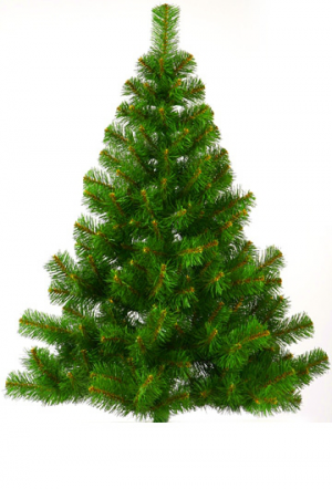елка (300x442, 157Kb)