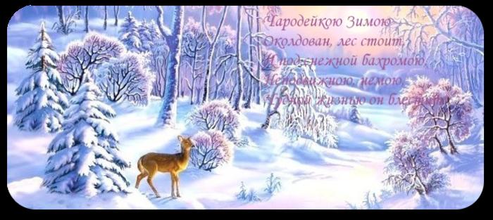 1321884828_775_ (700x313, 432Kb)
