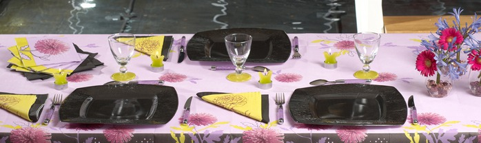 Very-nice-tableware-for-summer-picnic-by-Tifany-Industries-3 (700x208, 53Kb)