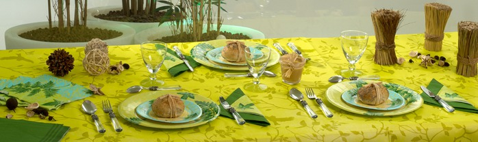 Very-nice-tableware-for-summer-picnic-by-Tifany-Industries-9 (700x208, 59Kb)