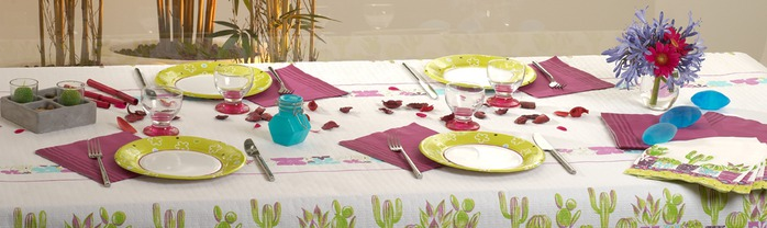 Very-nice-tableware-for-summer-picnic-by-Tifany-Industries-10 (700x208, 55Kb)