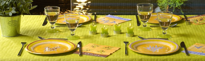 Very-nice-tableware-for-summer-picnic-by-Tifany-Industries-13 (700x208, 60Kb)