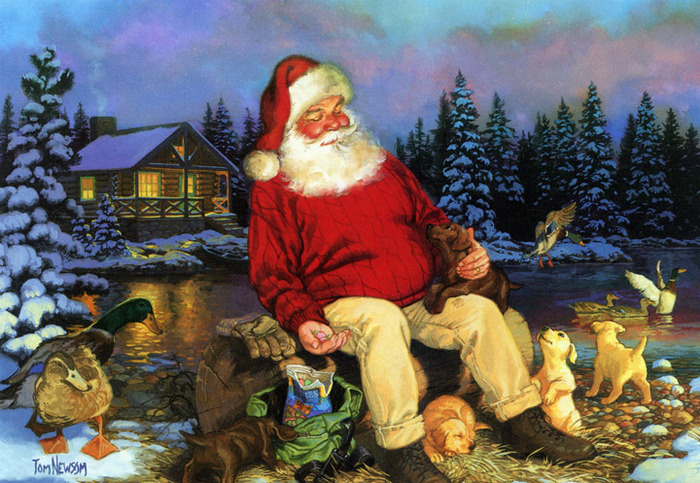 Santa-by-the-Pond (700x483, 183Kb)