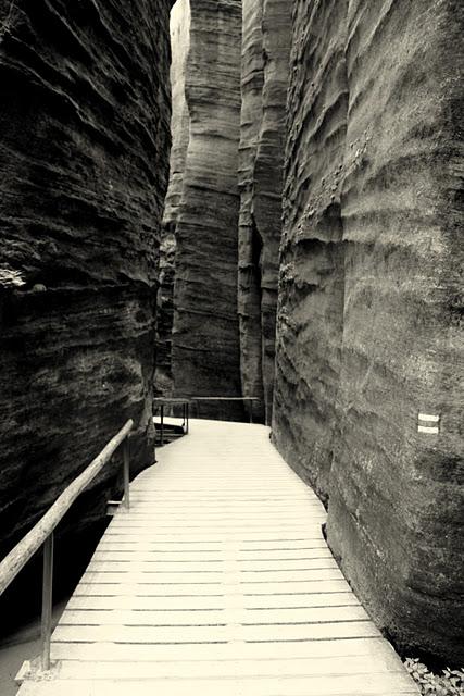 Адершпаско-Теплицкие скалы 11188