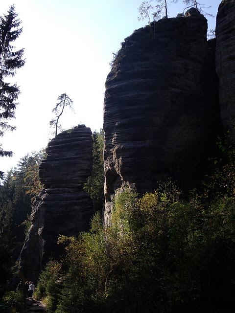 Адершпаско-Теплицкие скалы 17417