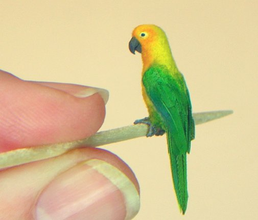 Поделки из перьев попугаев