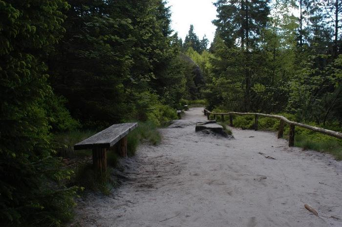 Адершпаско-Теплицкие скалы 30668