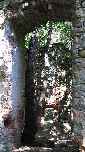 Адершпаско-Теплицкие скалы 87499