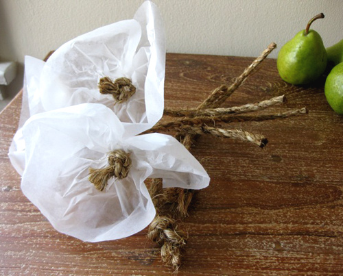 brenna_ropeflowers_closeup-90x90 (90x90, 3Kb)/4390899_brenna_ropeflowers_closeup (500x403, 99Kb)