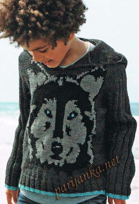 Волк на вязанном свитере