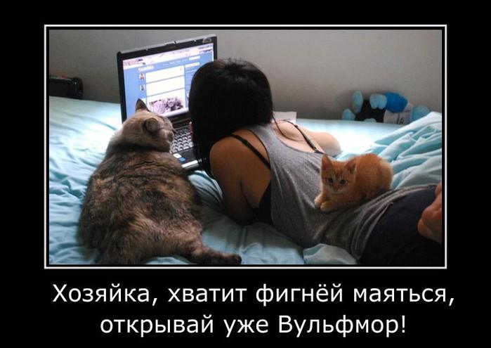 Вульфмор: самый свежий и актуальный юмор в Сети/4413077_wolfmordem13 (700x495, 66Kb)