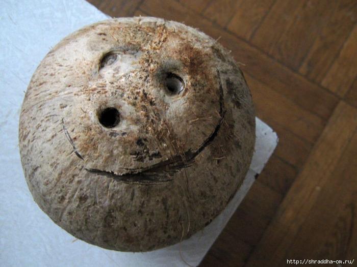 улыбка кокоса (700x525, 238Kb)