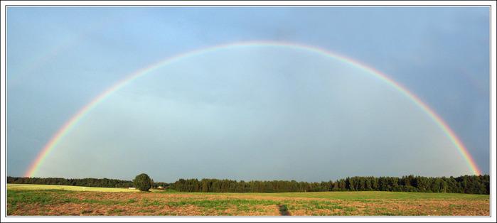 rainbow2011_2 (700x314, 63Kb)