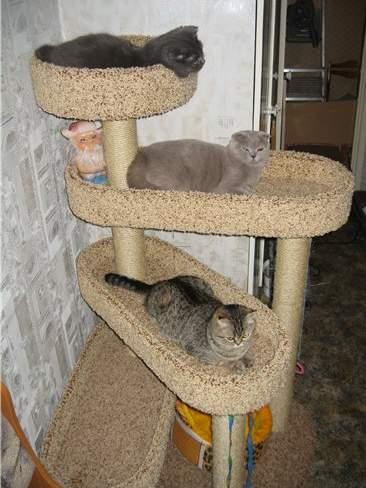 Домик для кошек своими руками