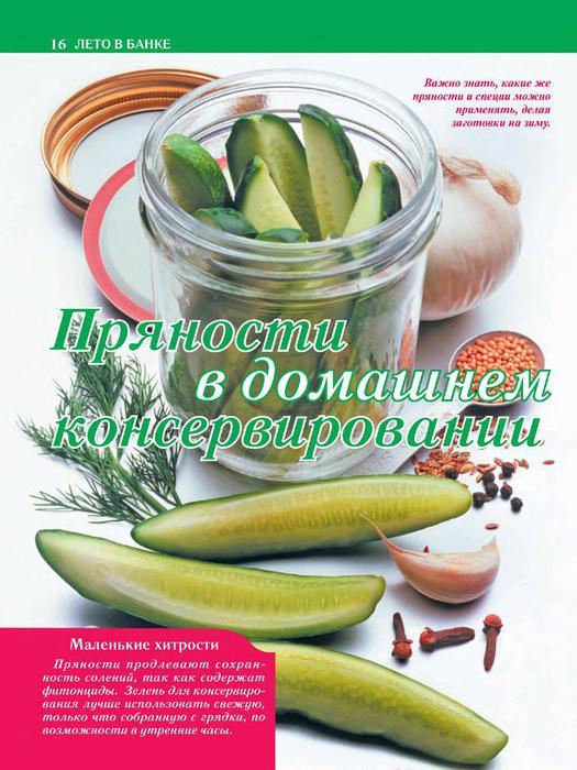 КулинариЯ. КоллекциЯ 2011'07_16 (525x700, 68Kb)