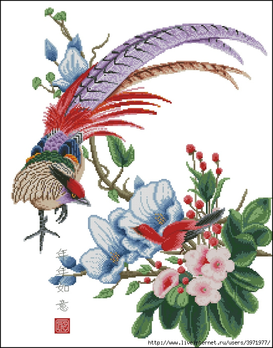 3971977_Peacockflowers (550x700, 294Kb)