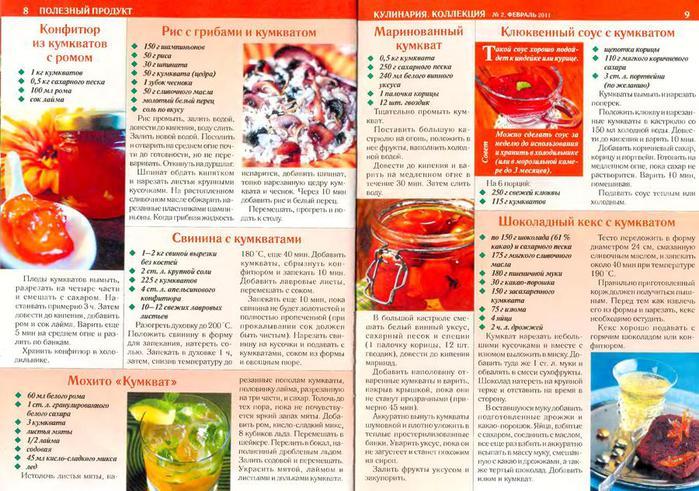 КулинариЯ. КоллекциЯ 2011'02_5 (700x491, 97Kb)