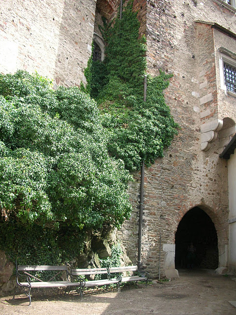 Чехия: Замок Пернштейн 22326