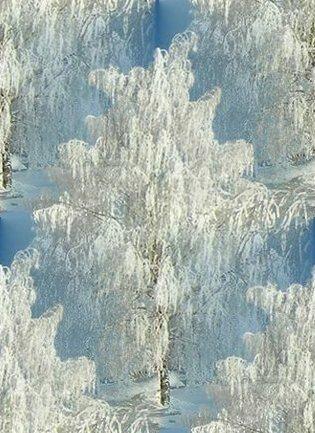 зима (315x433, 45Kb)