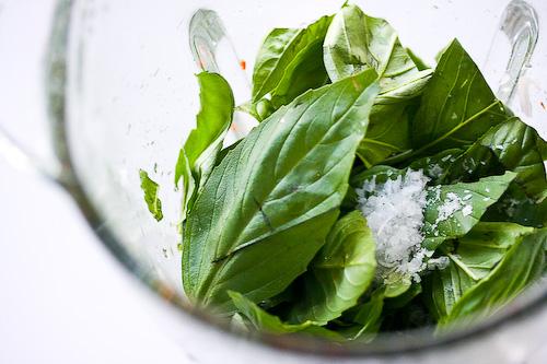 caprese-salad-basil-vinaigrette-47 (500x333, 105Kb)