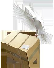 голубь (176x219, 46Kb)