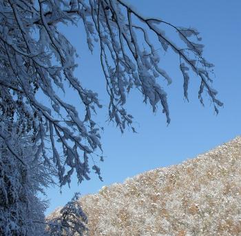 На Красной Поляне уже снег (350x344, 277Kb)