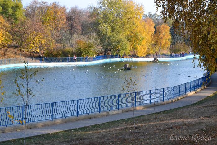 пруд в одесском парке/4348076_5noyabrya11045pm (700x466, 244Kb)