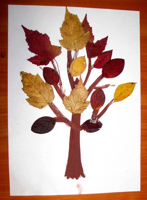 Дерево из листьев на бумаге