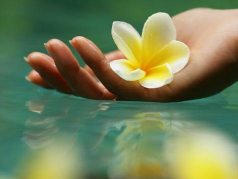 Ведическая-культура-и-Аюрведа_www_veda-life_com (477x358, 36Kb)