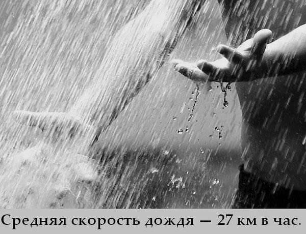 1315545663_gxhshe9yyjzngvj (600x460, 49Kb)