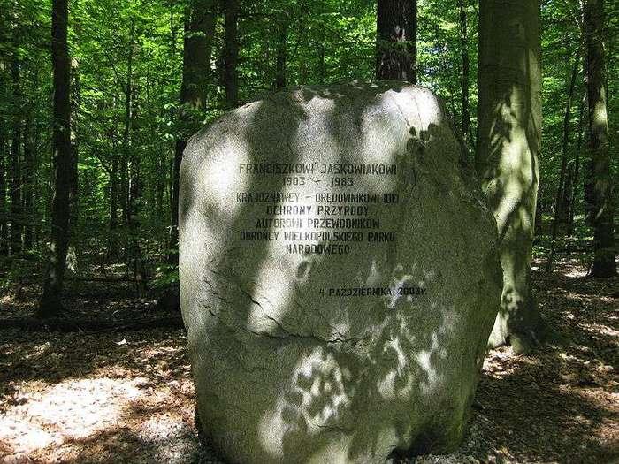 800px-Głaz_w_Wielkopolskim_Parku_Narodowym_(Franciszek_Jaśkowiak)_ (700x525, 83Kb)