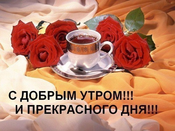 54981229_45434142_1245648180_43570527_chay (600x450, 92Kb)