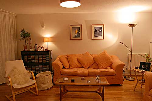 03_tungsten_living_room (500x333, 20Kb)