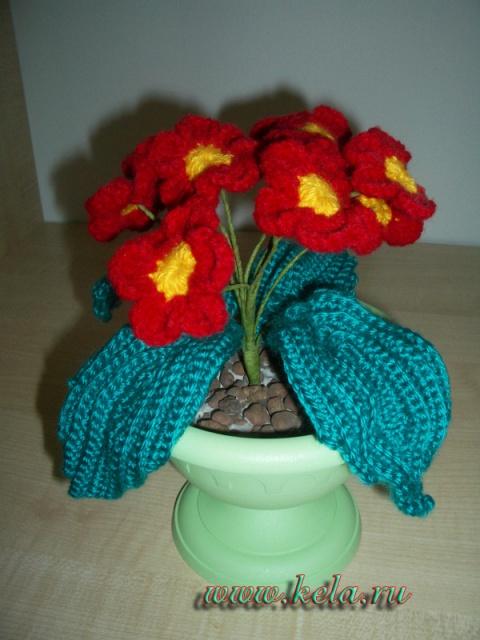 Связанные цветы крючком примула в горшочке. украшение. цветок в горшке.