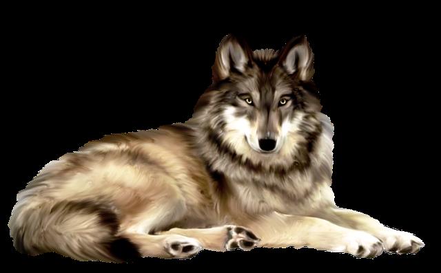 лукоморье_fantasy_collab (3) (640x397, 304Kb)