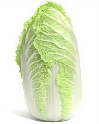 cabbage11 (199x250, 8Kb)
