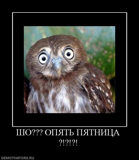 Юмор, приколы, анекдоты, демотиваторы ...: esoterick.ru/post196229708