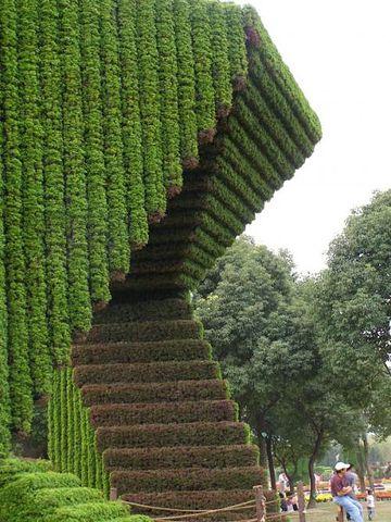 топиар,фигурная стрижка деревьев,фигуры из травы,фигуры из кустов