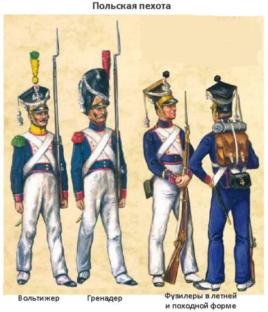 12 польская пехота (534x622, 90Kb)